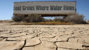foodgrowswherewaterflows
